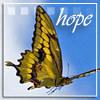 Hopebutterfly_32